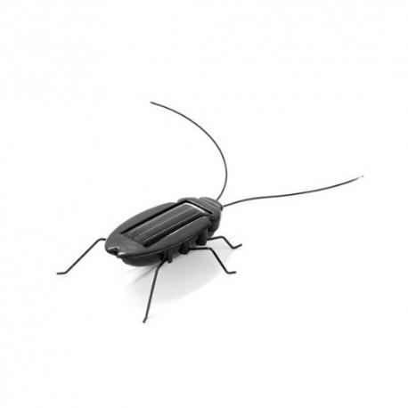 Cucaracha solar (solar cockroach)
