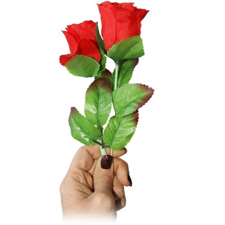 Multiplicación de rosas