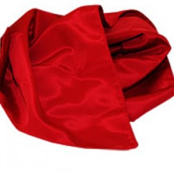 Pañuelo desaparición de billete (handkerchief vanishing bill)
